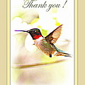 Thank You Card - Bird - Hummingbird by Travis Truelove