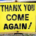 Thank You Come Again by Ed Weidman