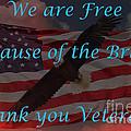 Thank You Veterans by Bob Hislop