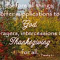 Thanksgiving 1 Timothy 2 by Robyn Stacey