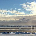 Icy Beach by Laurie Pocher