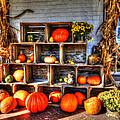 Thanksgiving Pumpkin Display No. 1 by Greg Hager
