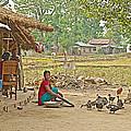 Tharu Farming Village Landscape-nepal by Ruth Hager