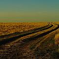 That Long Long Road by Jeff Swan