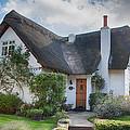 Thatched Cottage by Dan McManus