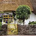 Thatched Cottage House by Danielle Summa