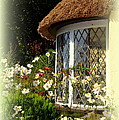 Thatched Cottage Window by Carla Parris