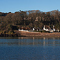 Thatched Cottages In A Town, Dunmore by Panoramic Images