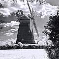 Thaxted Mill In Full Sail by Jack Torcello