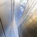 The Abstract Curves Of The Disney Concert Hall by Angela Stanton