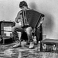The Accordion by Eugenio Moya
