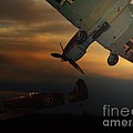 The Air Battle Of Britain by Thomas Woolworth