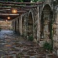The Alamo by Erika Fawcett