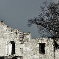 The Alamo by Gary Richards