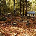 The Alfred Reagan Cabin Autumn by John Saunders