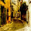 The Alley by Wayne Pascall