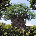 The Amazing Tree Of Life  by Lingfai Leung