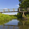 The Ambling River by David Pyatt