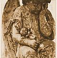 The Angel Virginia by Nadalyn Larsen
