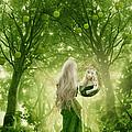 The Apple Fairy by Babette Van den Berg