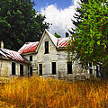 The Apple Tree On The Hill by Debra and Dave Vanderlaan