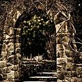 The Archway by Venetta Archer