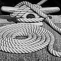 The Art Of Rope Lying by Nikolyn McDonald