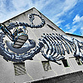 The Artist Roa At Work  by Steve Taylor