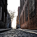 The Back Alley by Bill Cannon