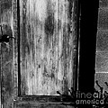 The Back Door Bw by Tim Richards