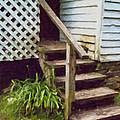 The Back Steps by Wynn Davis-Shanks