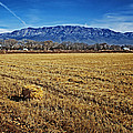 The Bale - Sandia Mountains - Albuquerque by Nikolyn McDonald