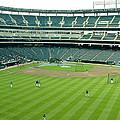 The Ballpark by Darrell Clakley