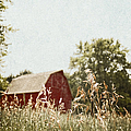 The Barn In The Distance by Margie Hurwich