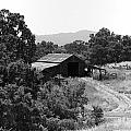 The Barn by Richard J Cassato