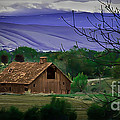 The Barn by Robert Bales