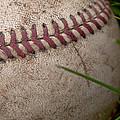 The Baseball by David Patterson