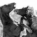 The Battle by Athena Mckinzie
