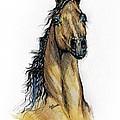 The Bay Arabian Horse 13 by Angel Ciesniarska