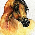 The Bay Arabian Horse 14 by Angel Ciesniarska