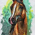 The Bay Arabian Horse 2 by Angel Ciesniarska