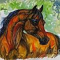 The Bay Arabian Horse 3 by Angel Ciesniarska
