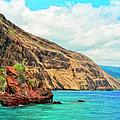 The Bay At Kealakekua by Dominic Piperata