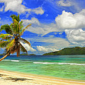 The Beach At Anse Gaulettes by Dominic Piperata