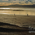 The Beach At Mounts Bay by Louise Heusinkveld