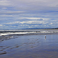 The Beach At Seaside by Cathy Anderson