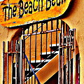 The Beach Bean by Antonia Citrino