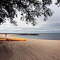 The Beach by Earl Johnson