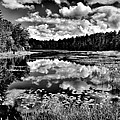The Beautiful Fly Pond On Rondaxe Road - Old Forge Ny by David Patterson