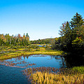 The Beautiful Moose River In Old Forge New York by David Patterson